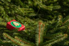 Presentes misteriosos em uma caixa de presente nos ramos da árvore de Natal na véspera do dia do Natal e de Valentim imagens de stock royalty free
