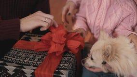 Presentes novos do bloco da família para o Natal Retrato da família com filha e cão vídeos de arquivo