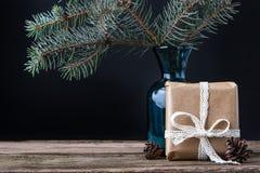 Presenti con i coni ed il brunch dell'albero di abete nel vaso Fotografie Stock