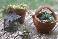 Presenti i vasi e le decorazioni coperti dai fiocchi della neve Fotografia Stock Libera da Diritti