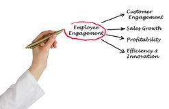 Components of Employee Engagement. Presenting Components of Employee Engagement Stock Image