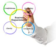 Business Requirements. Presenting diagram of Business Requirements royalty free stock photography
