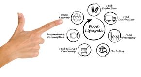 Food lifecycle royalty free stock image