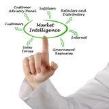 Market Intelligence Stock Photo