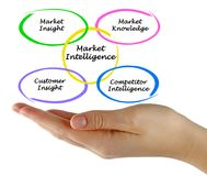 Market Intelligence Royalty Free Stock Photos