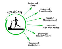 Usefulness of exercising. Presenting diagram of Usefulness of exercising Royalty Free Stock Photography