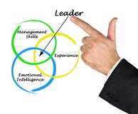 Leader qualities Stock Images