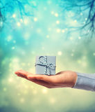 Presenting a small blue gift box Stock Photos