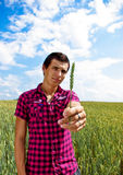 Presenting wheat in wheat field. Young man is standing in wheat field and holding wheat in his arms - presenting clean food, healthy lifestyle Stock Photo