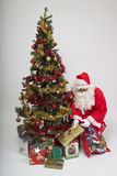 Presents for everyone. Santa Claus and his Christmas tree Stock Image