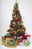 Presents for everyone. Look at those presnets under the Christmas tree Stock Photography