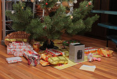 Presents  under christmas tree. Presents  under the  christmas tree in room Stock Image