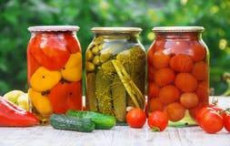 Preservação dos vegetais blanks Foco seletivo Alimento fotografia de stock royalty free