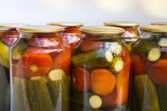 Preservación de un banco de tomates y de pepinos Foto de archivo libre de regalías