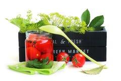 Preservar los tomates Imágenes de archivo libres de regalías