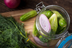 Preservation cucumber with dill Stock Image