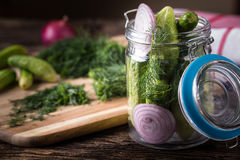 Preservation cucumber with dill and onion Stock Image