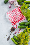 Preservation cucumber for winter, savory organic food Stock Photography