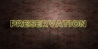 PRESERVATION - fluorescent Neon tube Sign on brickwork - Front view - 3D rendered royalty free stock picture Stock Image