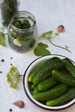 Preservation of pickling cucumber. Preparation of conservation from organic vegetables on a light background. Homemade organic cru. Nch green pickles in a jar Stock Images
