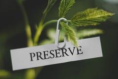 Preserve nature Stock Photos