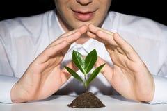 Preserve uma planta Imagens de Stock Royalty Free