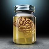 Preserve Your Mind. And brain preservation as a medical and psychology symbol for protecting memories and preserving neurology health with 3D render Royalty Free Stock Photo