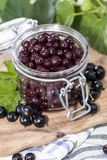 Preserved Black Currants Royalty Free Stock Photography
