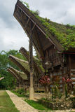 Preserved Boat House Tana Toraja Village Stock Photos
