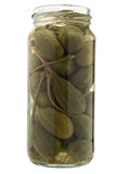 Preserved caper  in jar. Royalty Free Stock Image