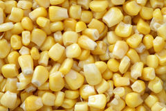 Preserved corn. Background. Close-up Royalty Free Stock Image