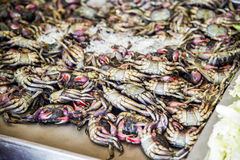Preserved crab with salt for sale2 Royalty Free Stock Photography