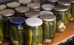 Preserved cucumber Stock Photography