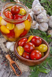 Preserved domestic tomato Stock Photos