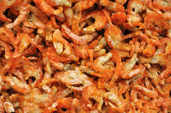 Preserved dry shrimp Royalty Free Stock Photo