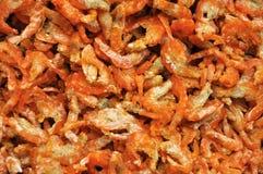Preserved dry shrimp Royalty Free Stock Photo