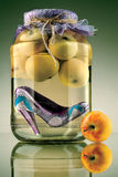 Preserved fashion. stock photography