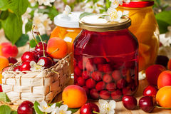 Preserved  fruit and berries Stock Images