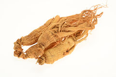 Preserved Ginseng Roots Stock Photo