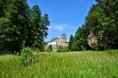 Preserved gothic castle in the middle of green woods Stock Photography