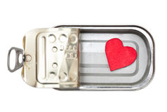 Preserved heart Royalty Free Stock Photo