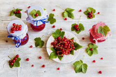 Preserved homemade red currant jam in glass jars on white wooden table. Fresh berries and green leaves, vintage plate, top view Royalty Free Stock Image