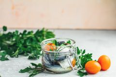 Preserved marinated sea fish in glass jar on gray concrete table. Sardines or baltic herring with rosemary, thyme, parsley, tomatoes slices and spaces in glass royalty free stock photography