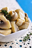 Preserved mushrooms Stock Photos