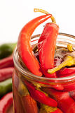 Preserved red hot chili peppers. On white background Stock Photography