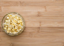 Preserved Soy Sprouts Stock Images