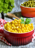 Preserved sweet corn. Royalty Free Stock Images