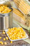 Preserved Sweetcorn Stock Photography