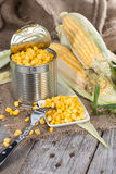 Preserved Sweetcorn Royalty Free Stock Image