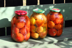 Preserved tomatoes in the glass cans Stock Photo